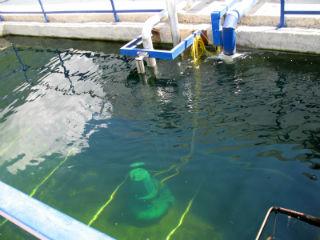 Резервуар с насосом, что выполняет функции накопителя очищенной жидкости.
