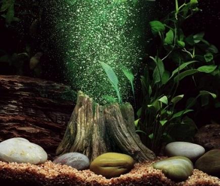 Пример использования процесса аэрации для очистки воды в аквариуме.