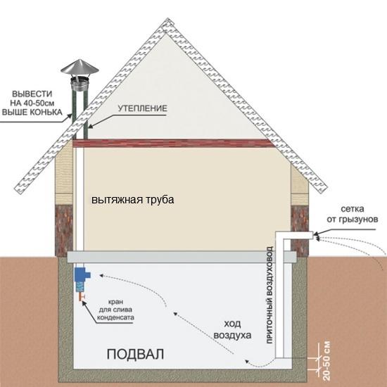 Подвал одноэтажного дома