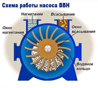 Схема работы водокольцевого выкуумного насоса
